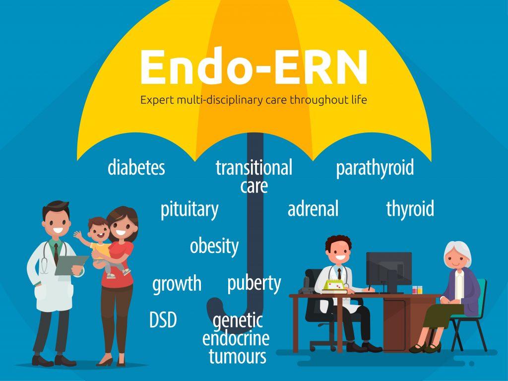 endo-ern-info-V170227